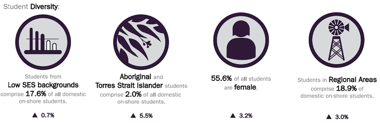 Chart showing diversity of higher education students