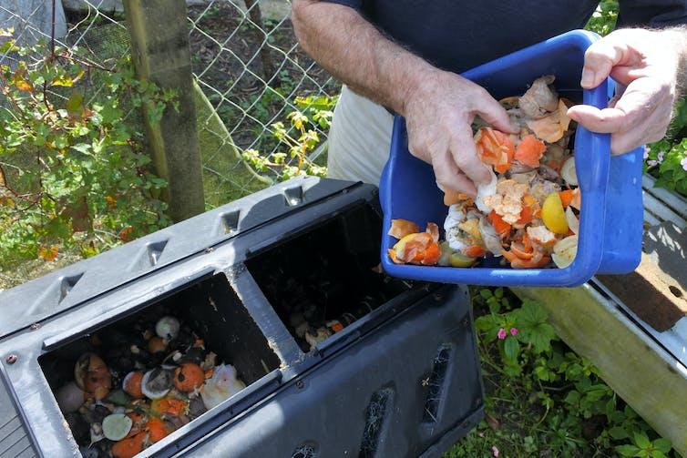A man scraping food scraps into a bin.