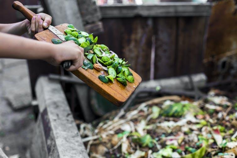 Vegetables being scraped into a bin.