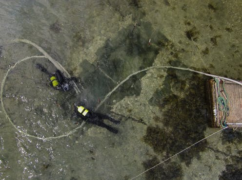 Divers excavate a shallow water submerged Mesolithic midden off the island of Hjarnø, Denmark.