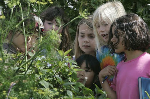 Young kids gather around to observe a plant