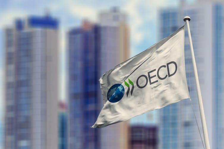 OECD flag against city skyline