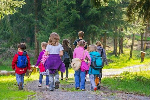 children and adult walk through forest