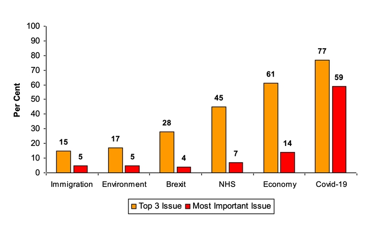 A graph showing that people rated COVID as the most important issue this year, followed by the economy, the NHS and Brexit.