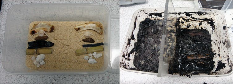 archaeological materials laid out on sand in a takeaway container, then buried in wet guano