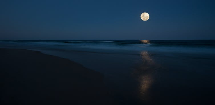 A full moon in the sky over a Queensland beach