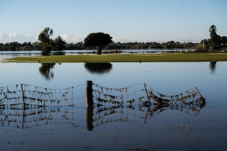 A flooded floodplain in NSW