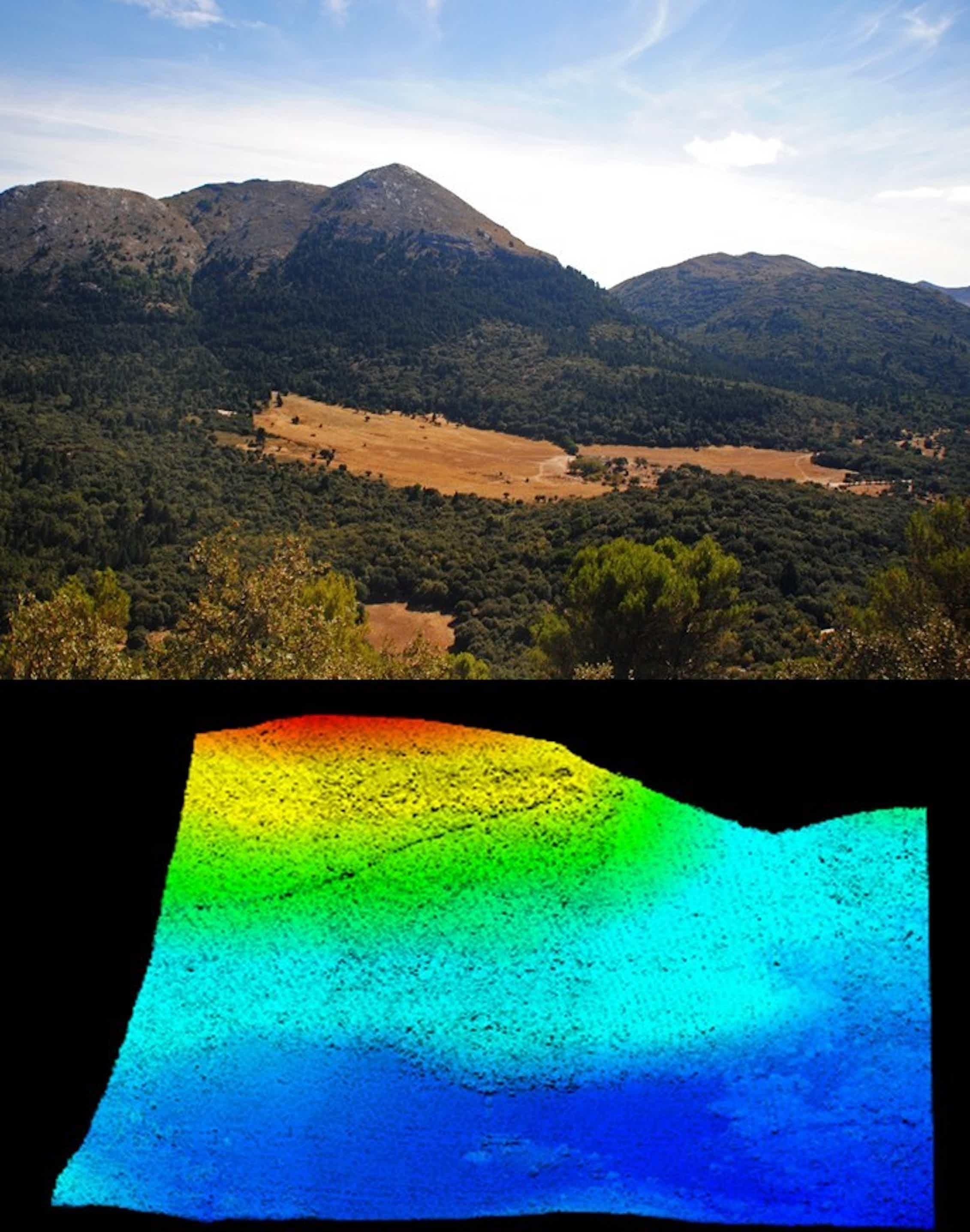 Pinsapar de la Nava en el Parque de la Sierra de las Nieves y modelización mediante nube de puntos obtenida con lidar.Álvaro Cortés Molino,Author provided