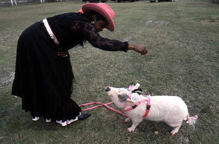 A woman in a pink cowboy hat feeds her pig.