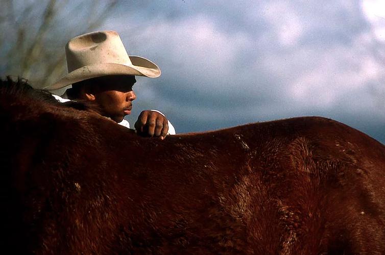 A man pets a horse.