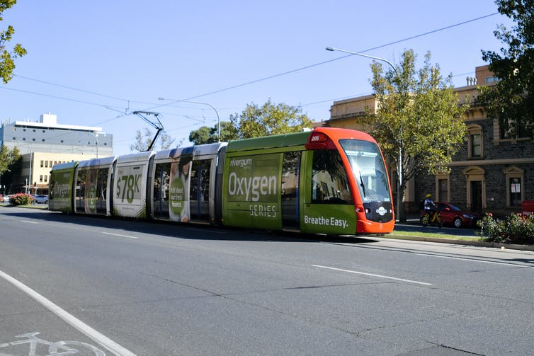 an Adelaide tram travels down the middle of the road