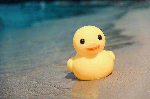 rubber duck on shoreline