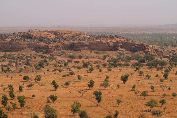 L'informatique moderne permet de traiter les grandes quantités de données des satellites d'imagerie à haute résolution. Repérer les arbres et arbustes isolés dans des zones arides et semi-arides permet mieux évaluer et comprendre l'évolution du couvert végétal. Martin Brandt, Author provided