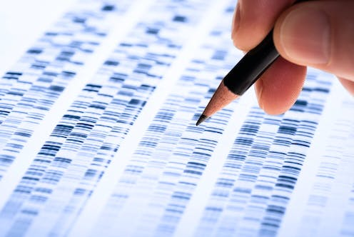 A hand takes a pencil to a genetic code