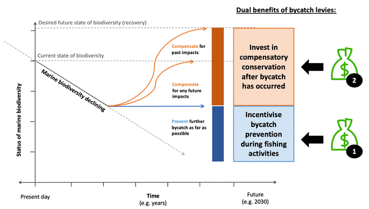 Dual benefits of bycatch levies