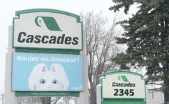 A Cascades sign is seen next to an evergreen tree.