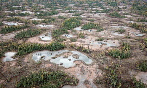 aerial view of a peatland