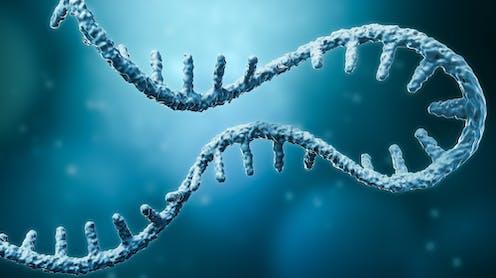 mRNA molecule
