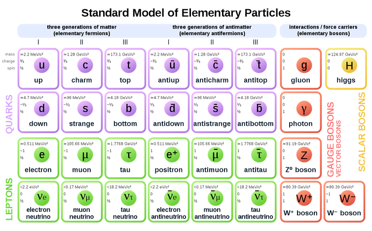 All of the particles and forces of the Standard Model of physics.