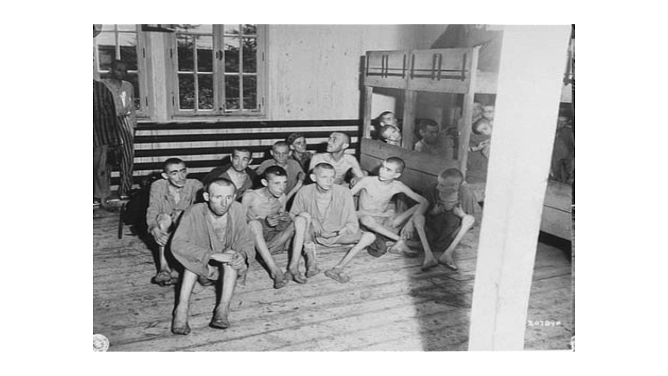 Cobayas humanos en la enfermería de Auschwitz.Author provided