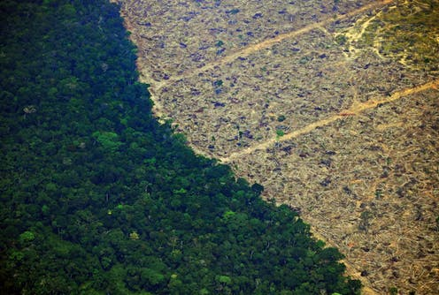 A deforested piece of land in the Amazon rainforest.