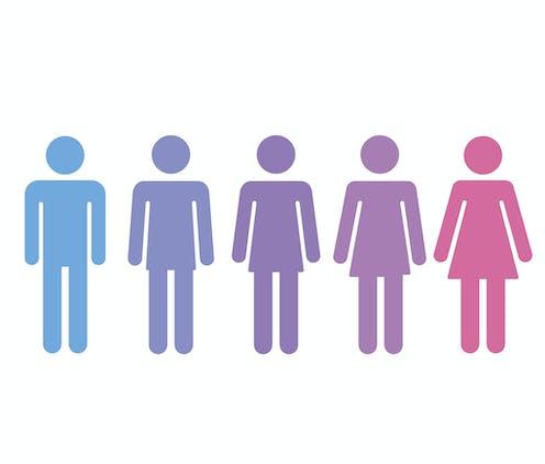 Stick figures representing a gender transition.