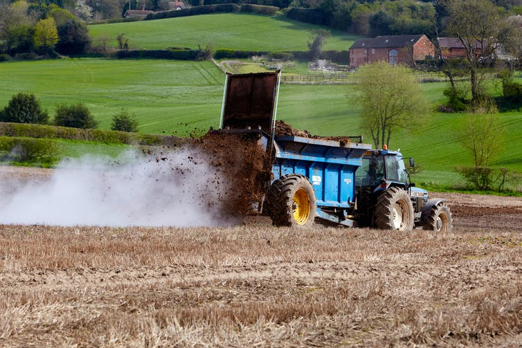 A farmer spreads manure over a field.