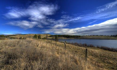 Grasslands next to lake