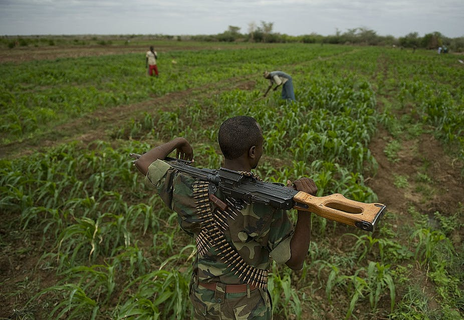 A man with an automatic rifle guards a crop field.