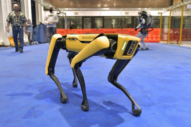 Robot 'Spot' walks across floor