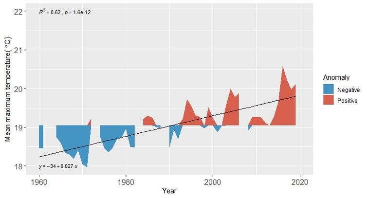 A graph showing rising temperatures at Cape Point between 1960 and 2019.
