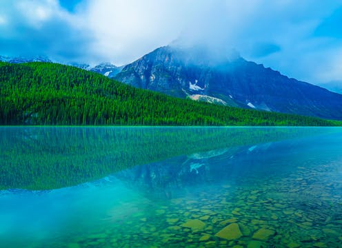 Alberta's Bow Lake is seen with crystal-clear blue waters surrounded by evergreens.