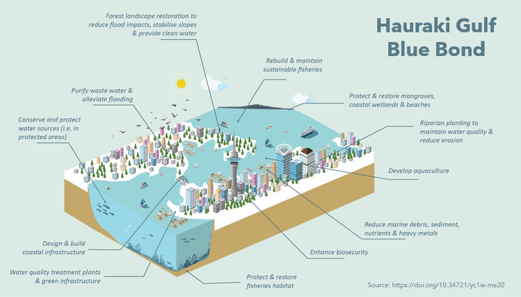 This graphic explains how a Hauraki Gulf blue bond scheme would work.