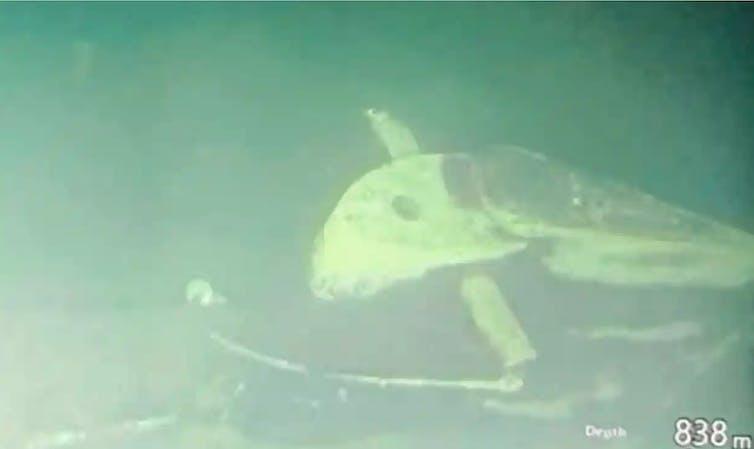 Submarine wreckage on sea floor