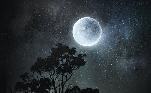 A full moon above some trees on a starry night.