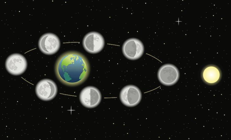 Diagramma che mostra le fasi della luna mentre orbita intorno alla Terra.