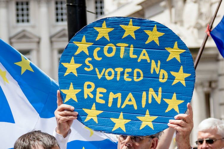 Protester holding up sign that says 'Scotland voted remain'.
