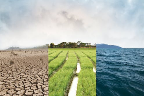 A collage of three pictures illustrating drought, a green field and the ocean.