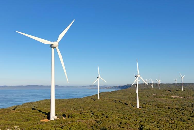 Wind farm near coast