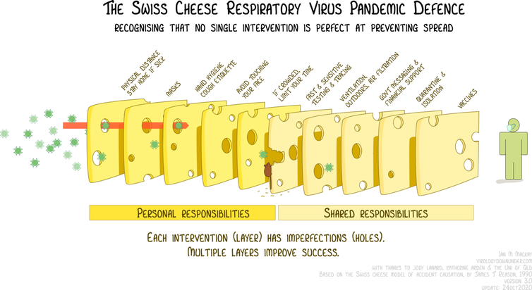A graphic showing virus particles passing through the holes in slices of Swiss cheese, as explained in previous paragraphs.