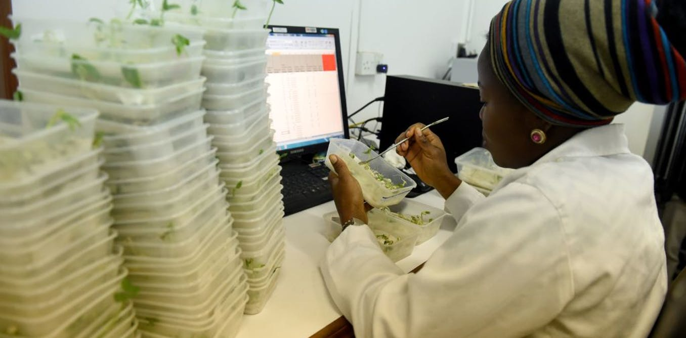 African countries must embrace the concept of good food as good medicine