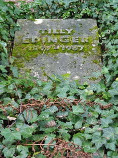 Picture of a gravestone with the name 'Tilly Edinger'.