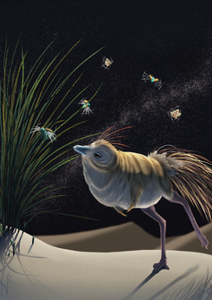 An artistic reconstruction showing _S. deserti as a small, feathered bipedal dinosaur with an owlish face