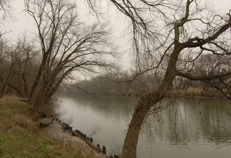 Rive de la rivière Rappahannock