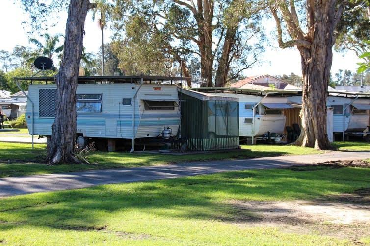 caravans under trees in a caravan park