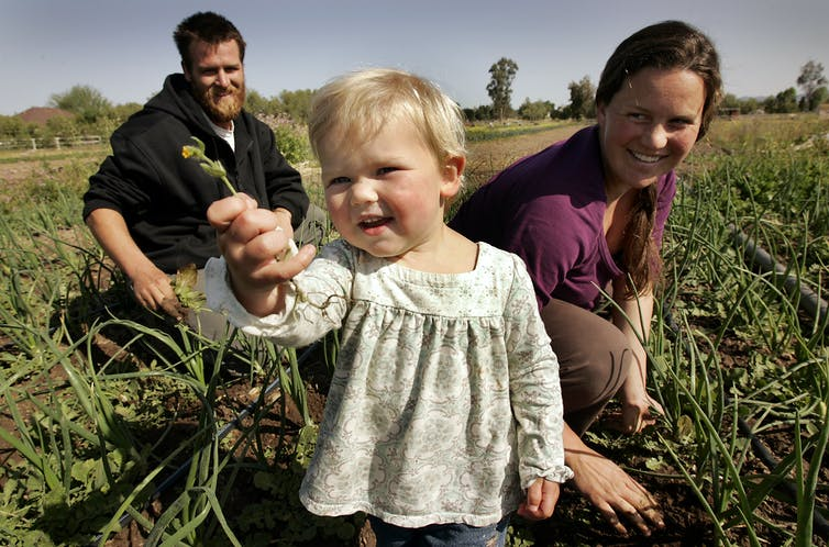 A couple and their young daughter in a farm field. The little girl holds a flower up for the camera.