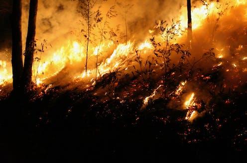 Bushfire on hill
