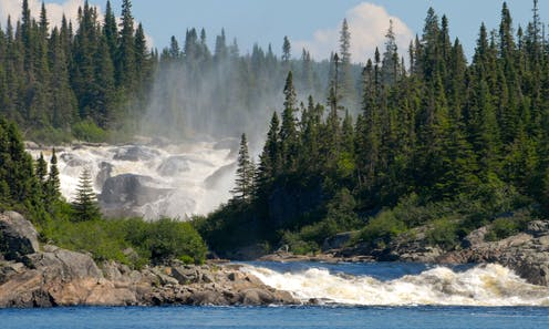 A large wide river rushing over rocks and past evergreen trees