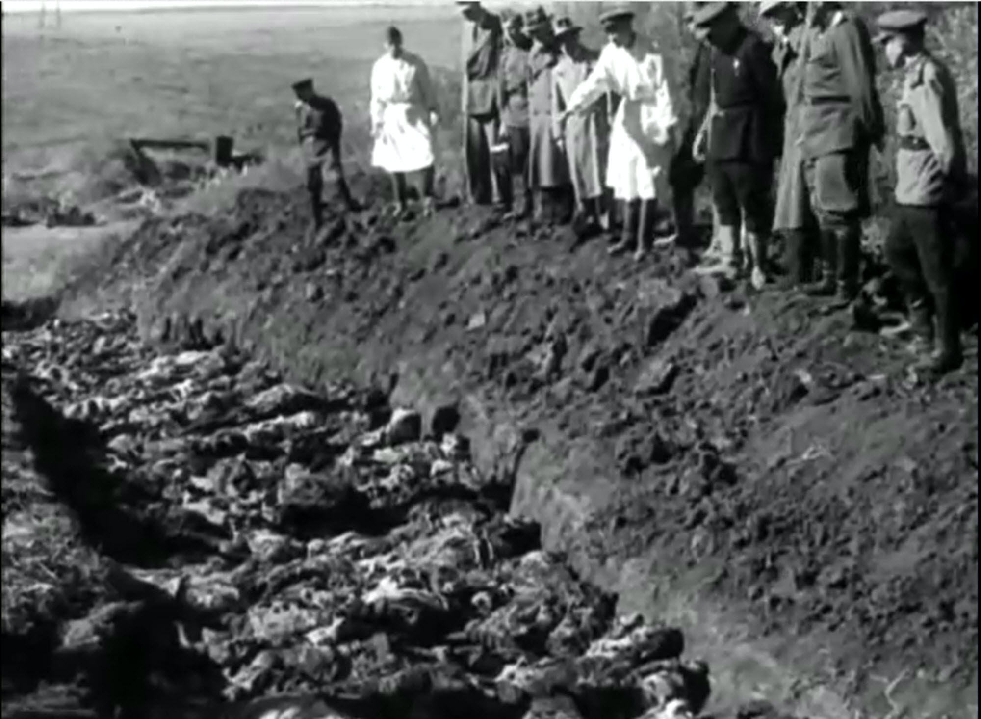 holocaust and bosnian genocide comparisons Kingston lecturer addresses the bosnian genocide on bbc 2 civil war in bosnia to the holocaust is sick and insignificance in comparison to what.