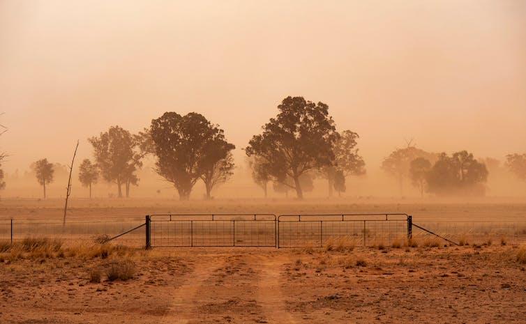 farm in dust storm